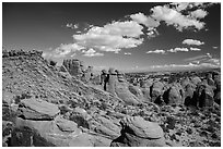 Entrada sandstone fins. Arches National Park ( black and white)