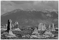 Fins and La Sal mountains. Arches National Park ( black and white)