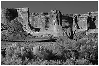 Courthouse wash and Courthouse towers in autumn. Arches National Park ( black and white)