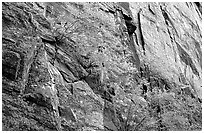Side canyon wall. Black Canyon of the Gunnison National Park, Colorado, USA. (black and white)