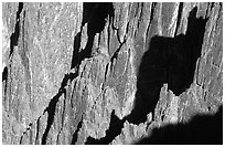 Detail of canyon wall from Kneeling Camel View, North Rim. Black Canyon of the Gunnison National Park ( black and white)