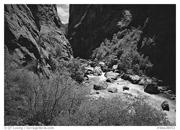 Gunisson River in narrow gorge in spring. Black Canyon of the Gunnison National Park (black and white)