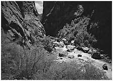 Gunisson River in narrow gorge in spring. Black Canyon of the Gunnison National Park ( black and white)