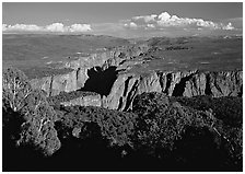 Canyon from  North vista trail. Black Canyon of the Gunnison National Park ( black and white)