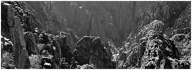 Spires inside canyon. Black Canyon of the Gunnison National Park (Panoramic black and white)