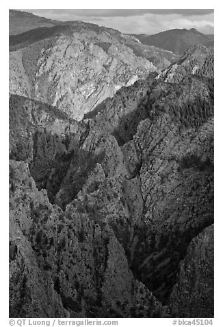 Tomichi Point view, late afternoon. Black Canyon of the Gunnison National Park (black and white)