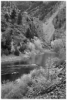 Gunnison river in autumn, East Portal. Black Canyon of the Gunnison National Park, Colorado, USA. (black and white)