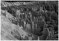Silent City dense cluster of hoodoos from Bryce Point, sunrise. Bryce Canyon National Park, Utah, USA. (black and white)