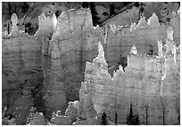 Backlit Hoodoos, mid-morning. Bryce Canyon National Park ( black and white)