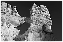 Hoodoos and windows. Bryce Canyon National Park, Utah, USA. (black and white)