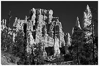 Hoodoos capped with magnesium-rich limestone. Bryce Canyon National Park ( black and white)