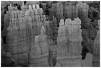 Glowing hoodoos, Fairyland Point, sunrise. Bryce Canyon National Park ( black and white)