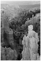 Hoodoos of Claron Formation, Fairyland Point. Bryce Canyon National Park ( black and white)