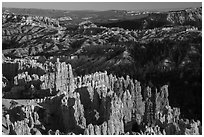 View from northern Rim Trail, late afternoon. Bryce Canyon National Park ( black and white)