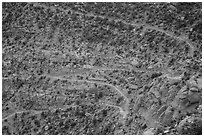 Steep switchbacks of the Flint Trail, Orange Cliffs Unit, Glen Canyon National Recreation Area, Utah. USA (black and white)