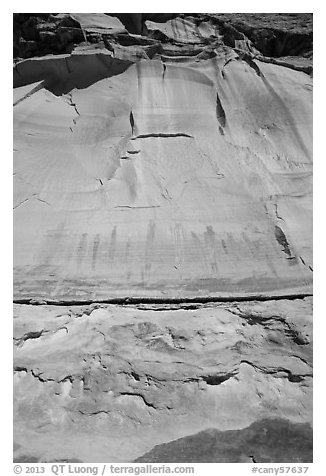 Looking up canyon wall with Harvest Scene pictographs. Canyonlands National Park, Utah, USA.