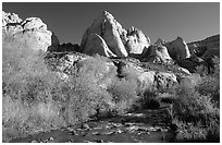 Freemont River and spring vegetation. Capitol Reef National Park, Utah, USA. (black and white)