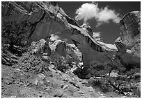 Hickman Bridge, 130 foot span. Capitol Reef National Park, Utah, USA. (black and white)