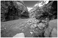 Wash in Capitol Gorge. Capitol Reef National Park, Utah, USA. (black and white)
