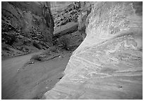 Rock walls, Capitol Gorge. Capitol Reef National Park ( black and white)