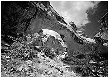 Hickman natural bridge from below. Capitol Reef National Park, Utah, USA. (black and white)
