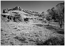 Castle Meadow and Castle, spring. Capitol Reef National Park ( black and white)