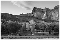 Fruita Campground and cliffs at sunset. Capitol Reef National Park, Utah, USA. (black and white)