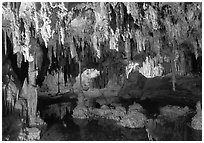 Delicate formations reflected in a pool, Lehman Caves. Great Basin National Park, Nevada, USA. (black and white)