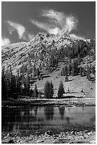 Stella Lake. Great Basin National Park ( black and white)