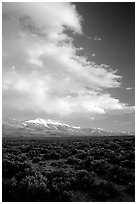 Snake Range and Wheeler Peak raising above Sagebrush, seen from the West, Sunset. Great Basin National Park, Nevada, USA. (black and white)