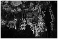 Gothic Palace Room, Lehman Cave. Great Basin National Park ( black and white)