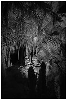 Room with delicate stalagtites, Lehman Cave. Great Basin National Park ( black and white)