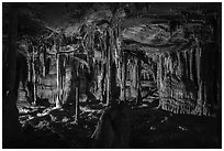 The Swamp, Lehman Cave. Great Basin National Park ( black and white)