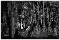 Marble cave formations, Lehman Cave. Great Basin National Park ( black and white)