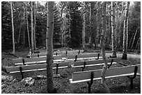 Amphitheater, Wheeler Peak Campground. Great Basin National Park ( black and white)