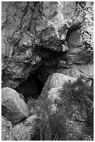 Entrance to Pictograph Cave. Great Basin National Park ( black and white)