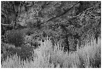 Grey Cliffs. Great Basin National Park ( black and white)