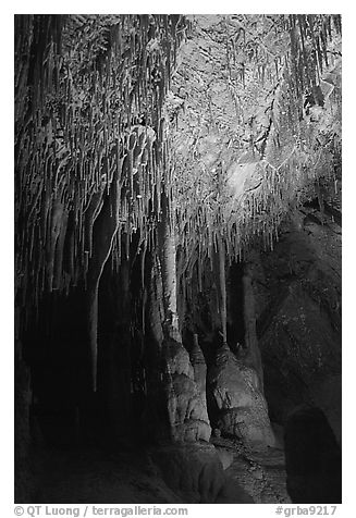 Soda Straws formations in Lehman Cave. Great Basin National Park, Nevada, USA.