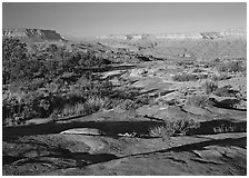Rock slabs on the Esplanade, early morning. Grand Canyon  National Park ( black and white)
