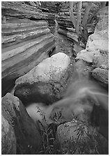 Entrance of Deer Creek Narrows. Grand Canyon  National Park ( black and white)