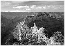 Wotans Throne seen from  North Rim, early morning. Grand Canyon National Park ( black and white)
