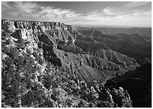 Rim near Cape Royal. Grand Canyon National Park ( black and white)