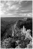 Wotan's Throne seen from Cape Royal, early morning. Grand Canyon National Park ( black and white)