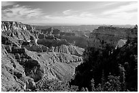 Cliffs and Angel's Arch near Cape Royal, morning. Grand Canyon National Park, Arizona, USA. (black and white)