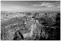 View from Roosevelt Point, morning. Grand Canyon National Park ( black and white)