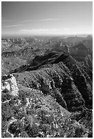 View from Point Imperial, morning. Grand Canyon National Park ( black and white)