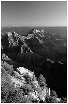 View from Bright Angel Point. Grand Canyon National Park ( black and white)