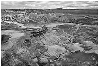 Petrifieds logs and Blue Mesa, mid-day. Petrified Forest National Park ( black and white)