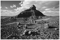 Petrified wood and Salomons Throne. Petrified Forest National Park ( black and white)