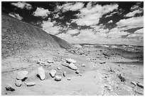 Concretions, Painted Desert badlands. Petrified Forest National Park ( black and white)